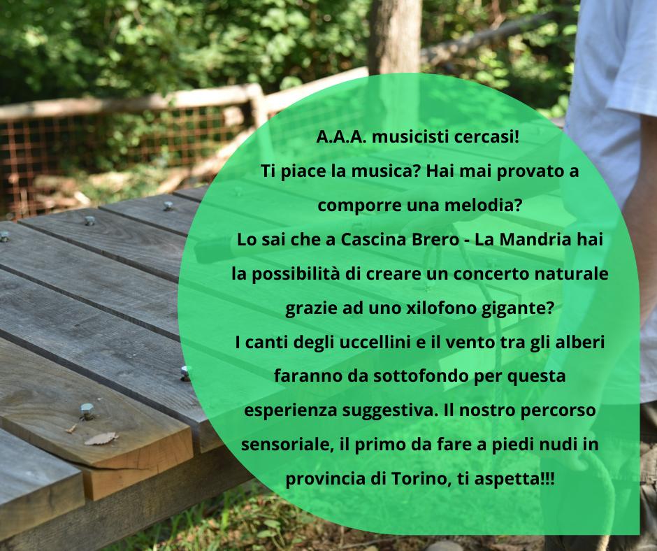 Percorso sensoriale - Barefooting a Cascina Brero Parco La Mandria