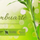 esperienza creativa bambù stupinigi (1)