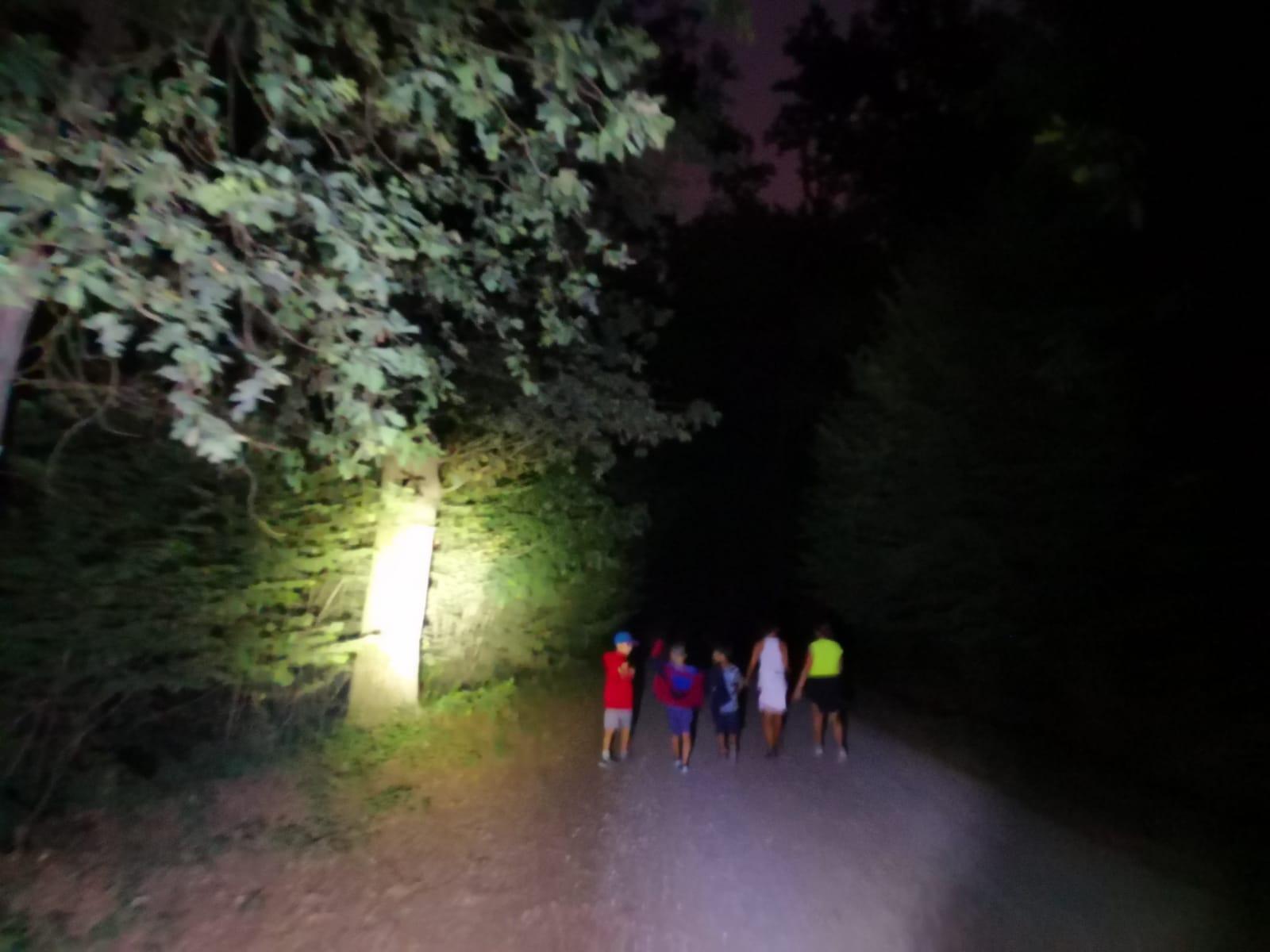 Escursione notturna al Parco La Mandria